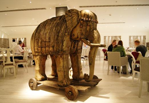 Roy the Elephant
