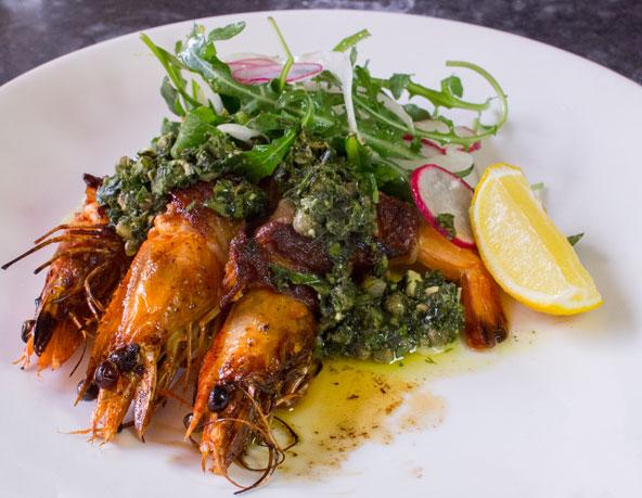 Olive Tree shrimp