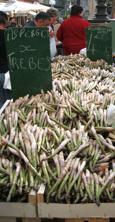 Some Asparagus Tips – story and recipe