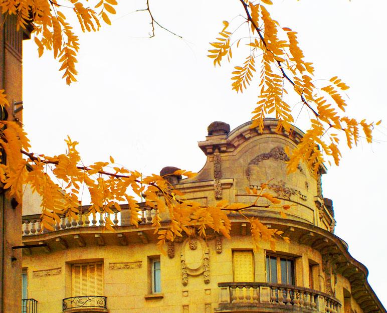 Reims autumn