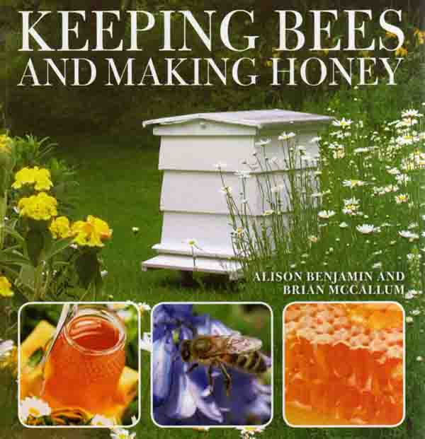 Keeping Bees and Making Honey by Alison Benjamin – review