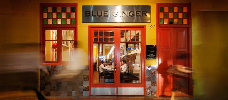 blue ginger front