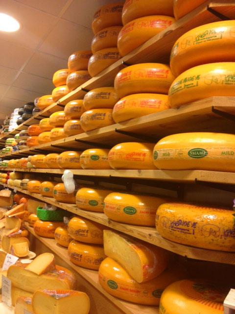 Rotterdam cheese