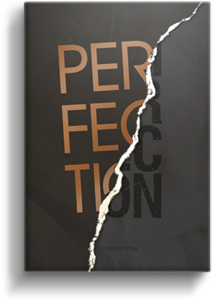 Perfection in Imperfection by Janice Wong – review