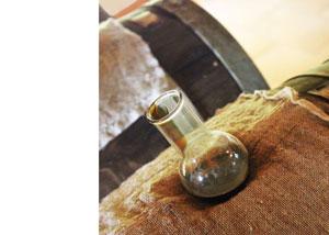 Balsamic vinegar in Emilia Romagna – travel review