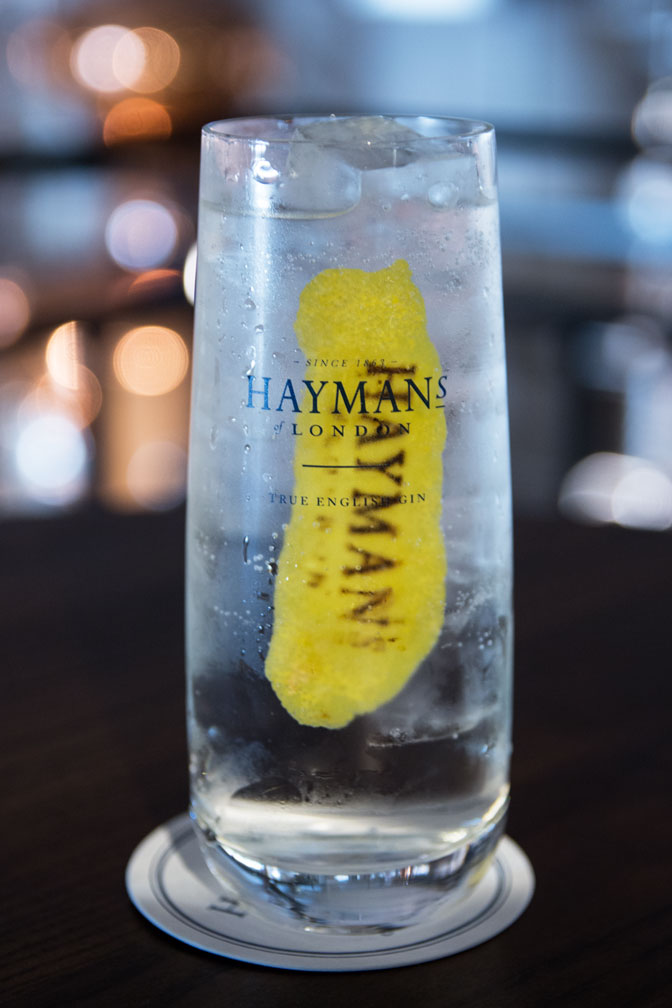 Hayman's Distillery Tour with Sam and Old Tom – review