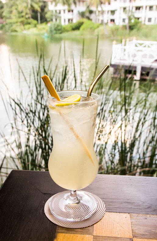 Voyager gin fizz