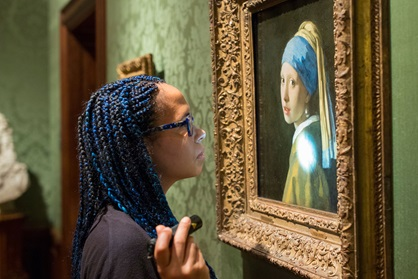 mauritshuis collection discovery