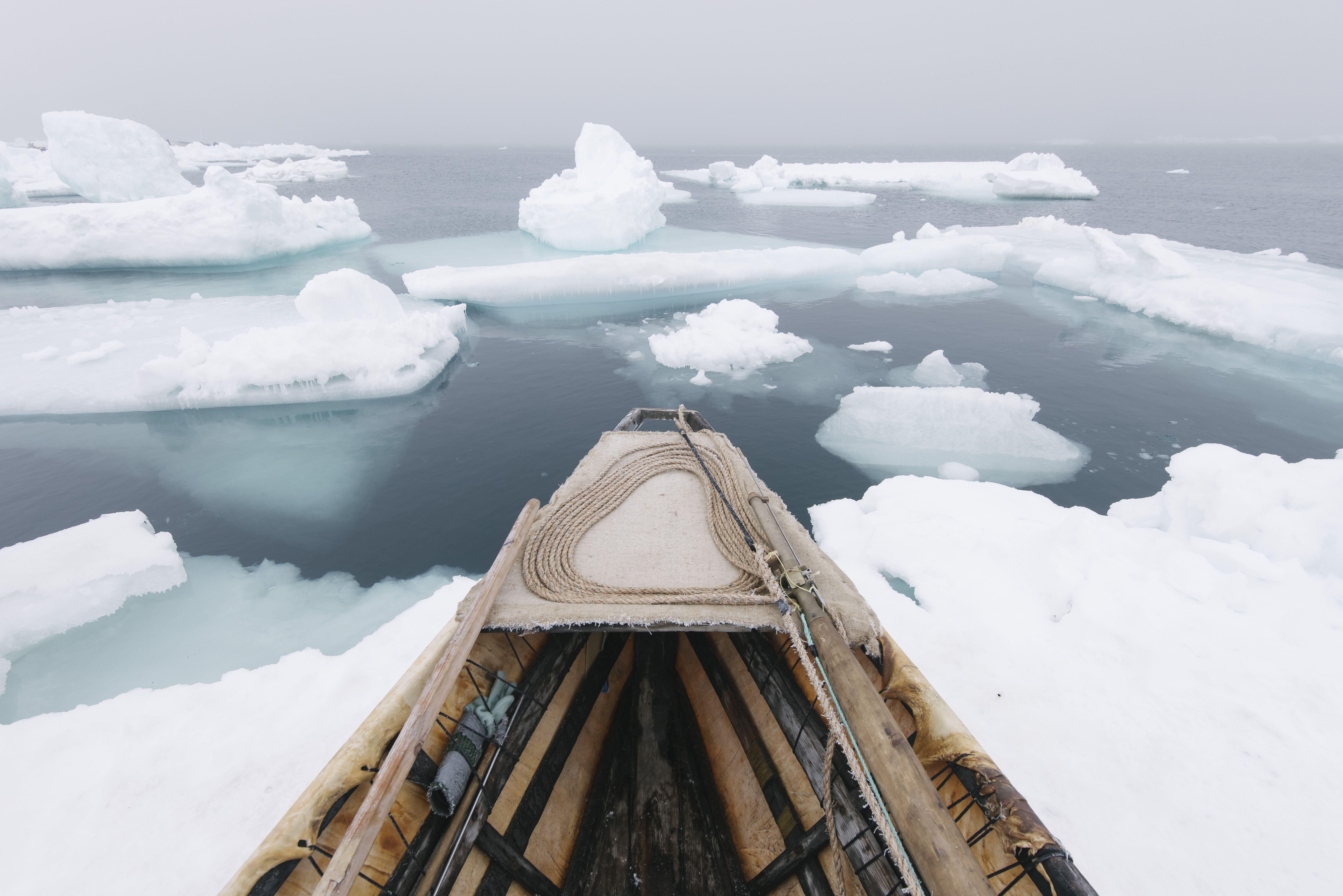 The Citi exhibition Arctic: culture and climate